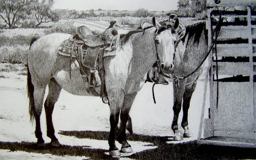 """Riley's Work Horses"""