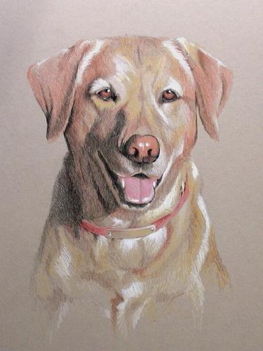 """""""Ridley's Dog"""""""