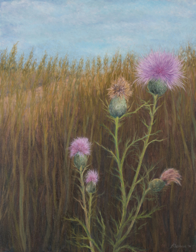 Purple Thistle by the Path