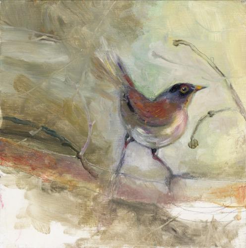 Pert Bird