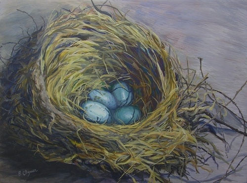 Nest (large view)