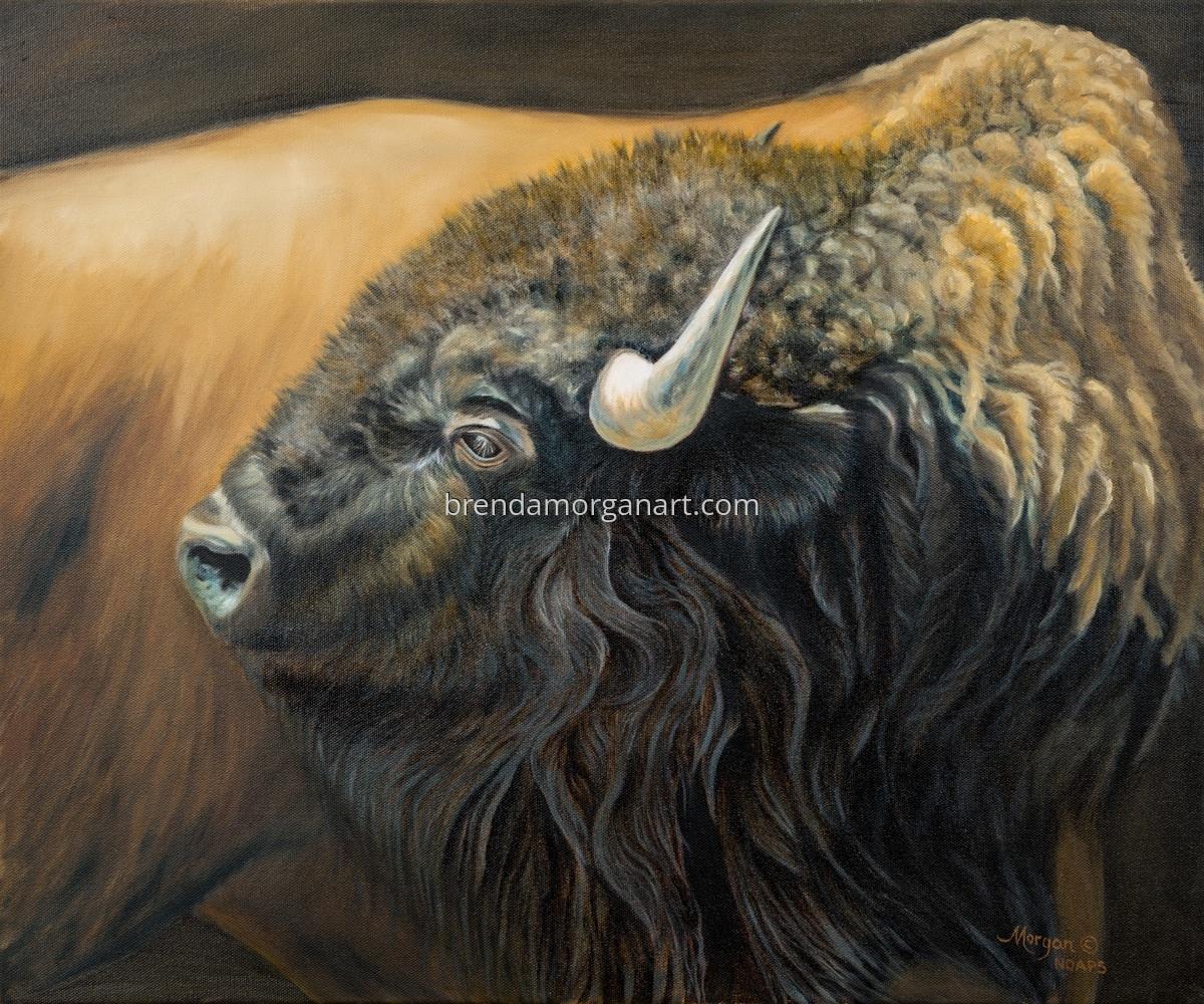 American Buffalo (large view)