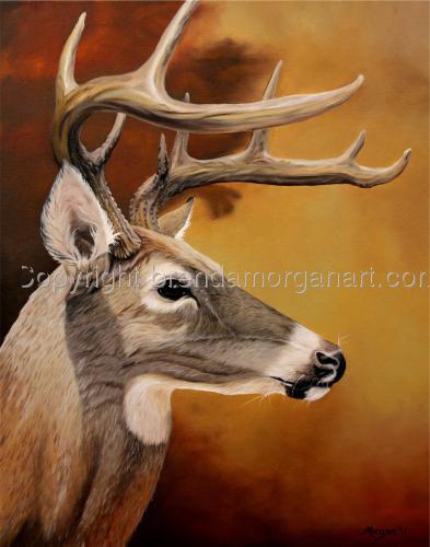Arkansas Buck