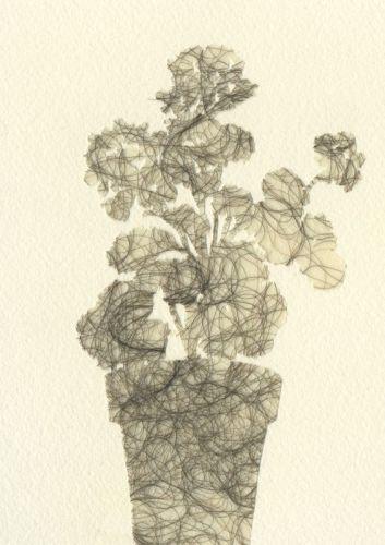 Silhouettes (Geranium) (large view)