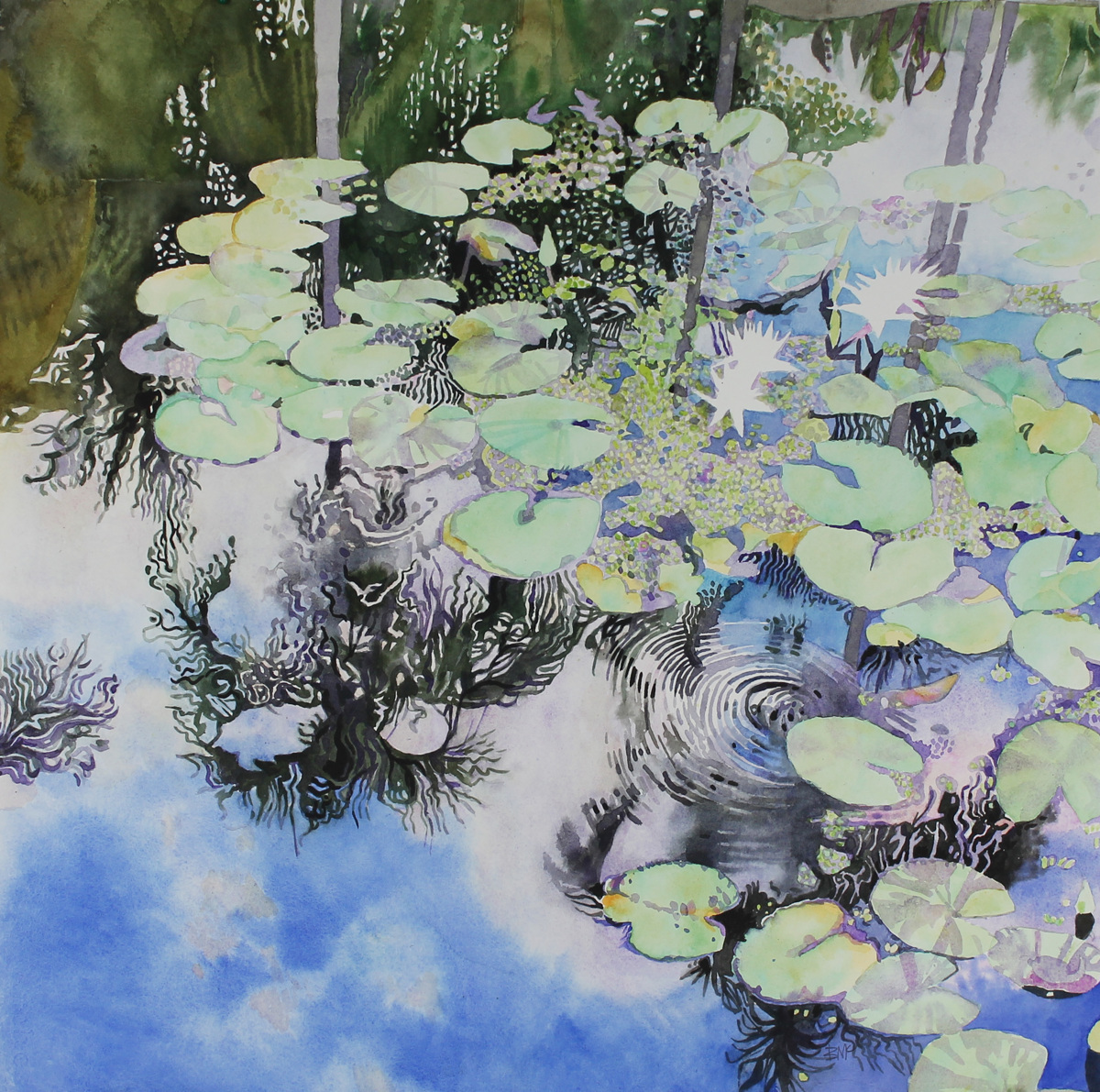Tropical Pond, White Water Lilies (large view)