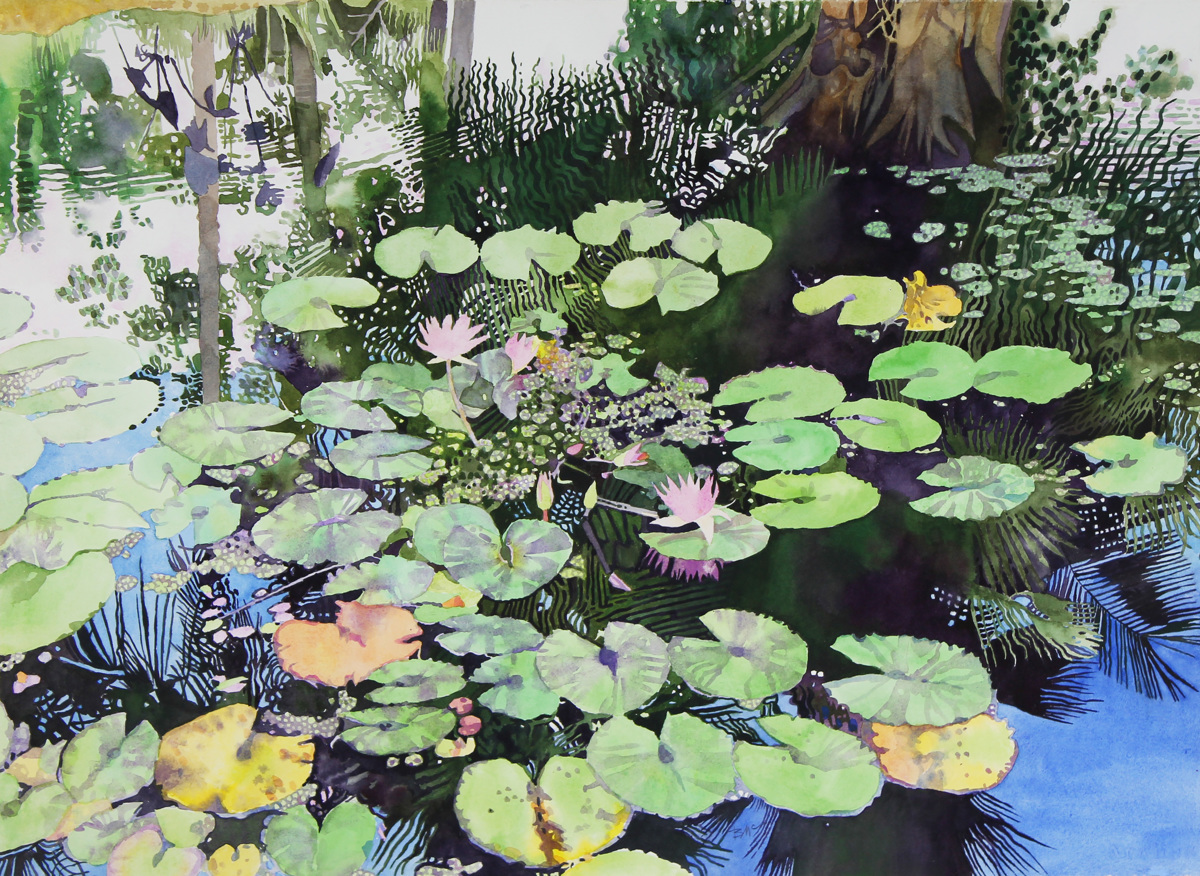 Tropical Pond (large view)