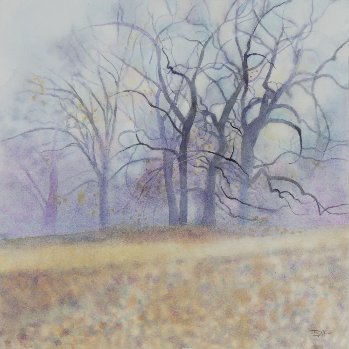 Misty Grove (large view)