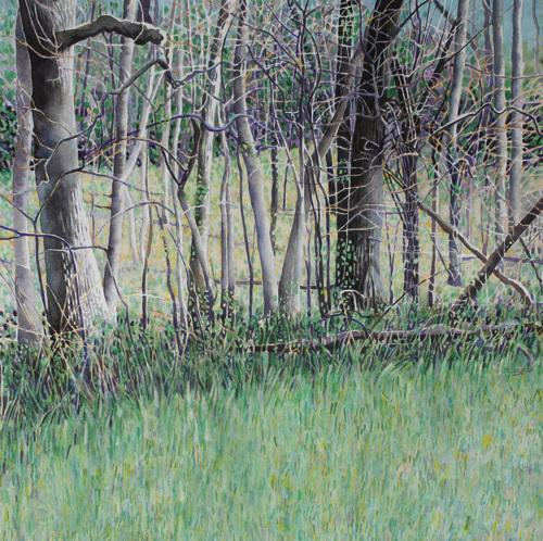 Woods' Edge--Spring