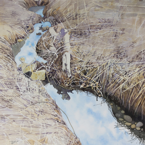 Rocky Creek, Dry Grass