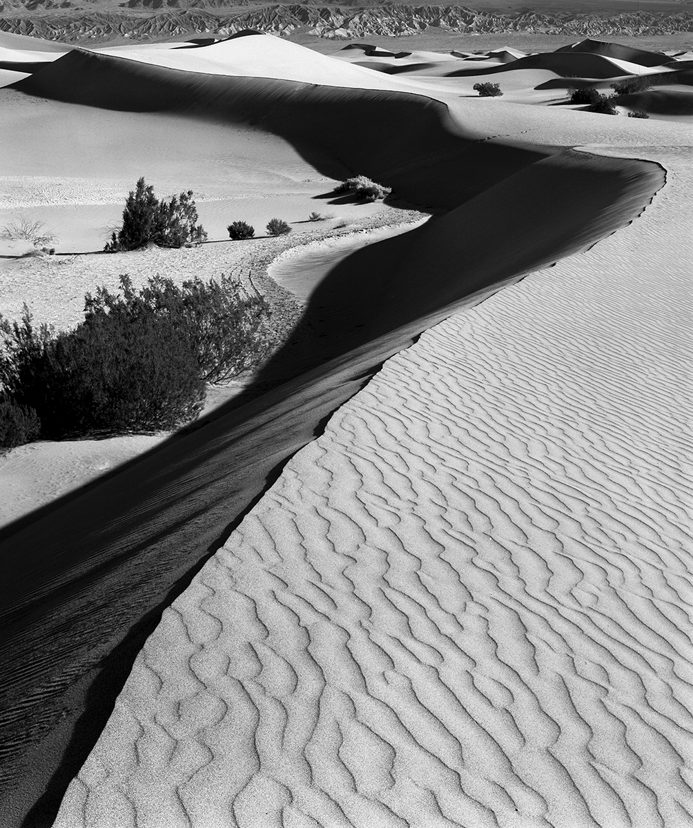 Death Valley Sand Dunes # 2 (large view)