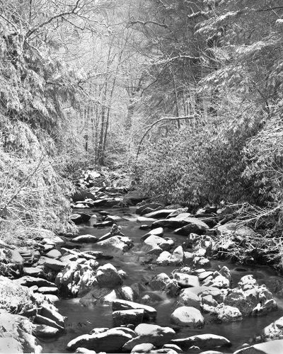 Mountain Stream in Winter