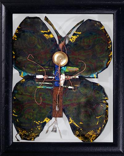 Butterfly I.E.D. iv