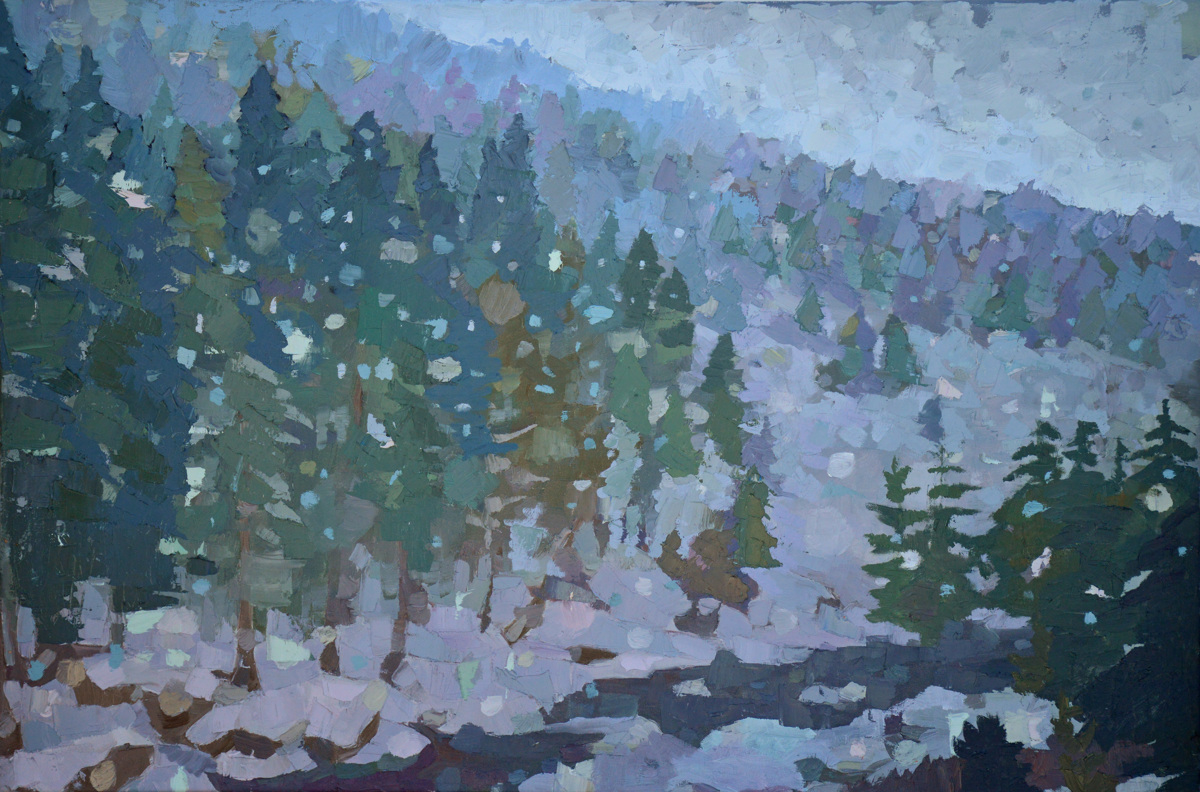 Flurries in Pinkham Notch (large view)