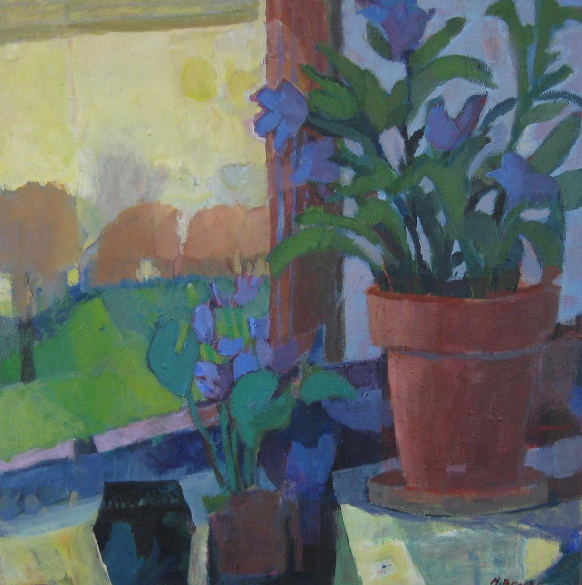 Plants (large view)