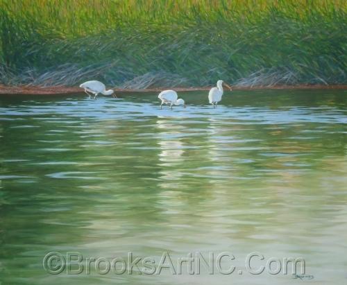 Three Ibis by Brooks Art NC.Com