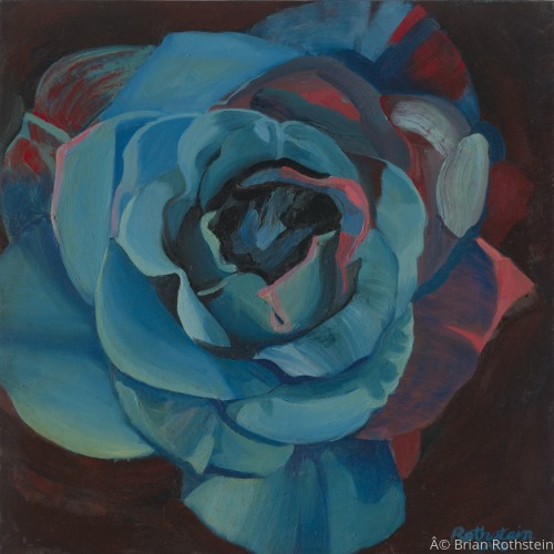 Emerging Rose 2 by Brian Rothstein