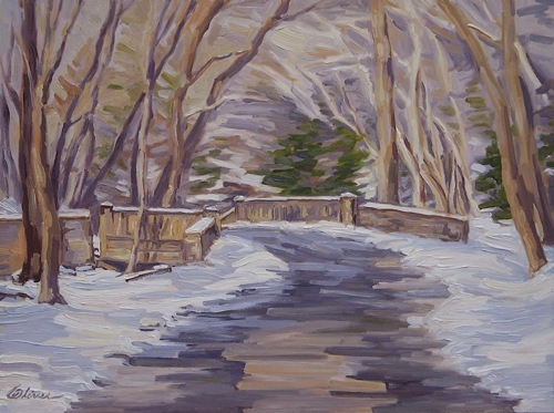 Bridge on Cuttalossa Creek by Bryan Oliver