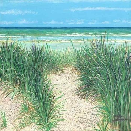 Sandy Imprint