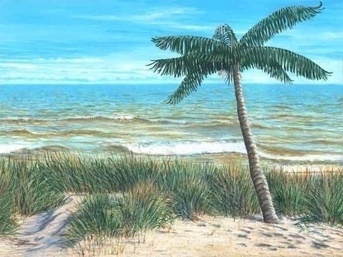 Coastal Lullaby