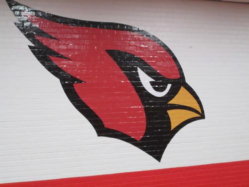 Senior Hallway Cardinal 1