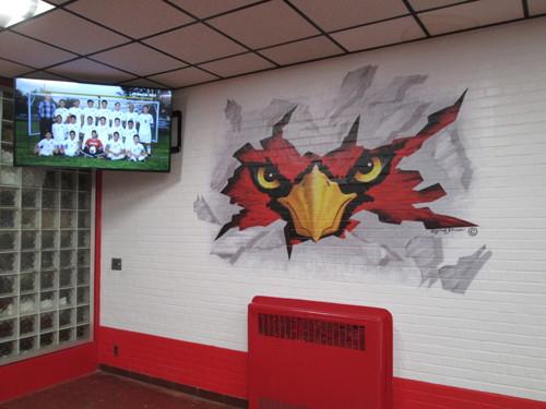 Cardinal Breaking Through The Wall