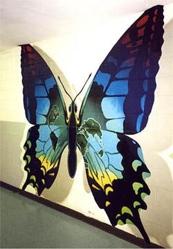 Douglas Butterfly/Garden City