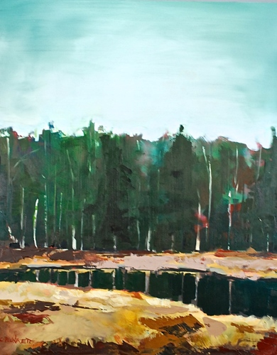 Beaver Pond by Chris Plunkett