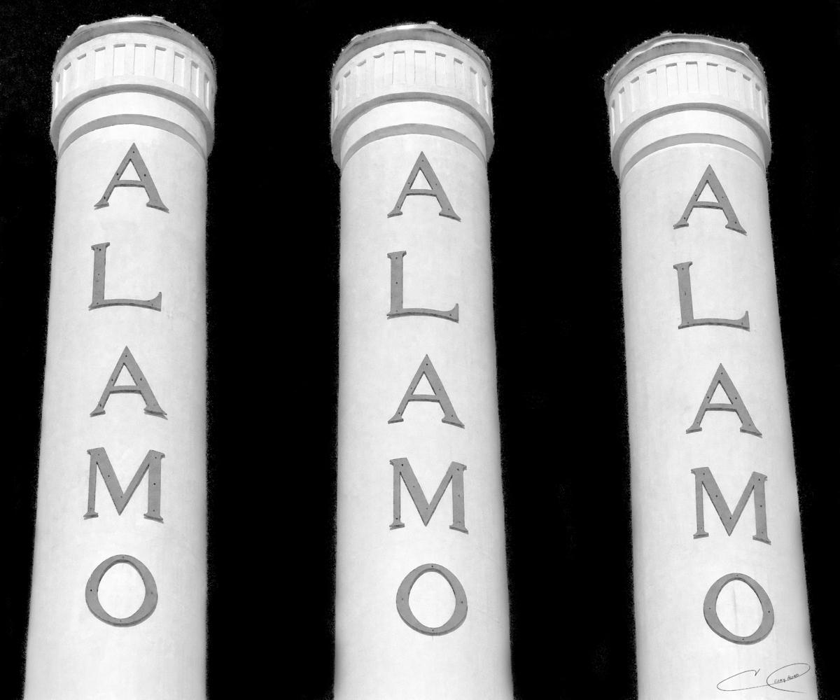 Alamo (large view)