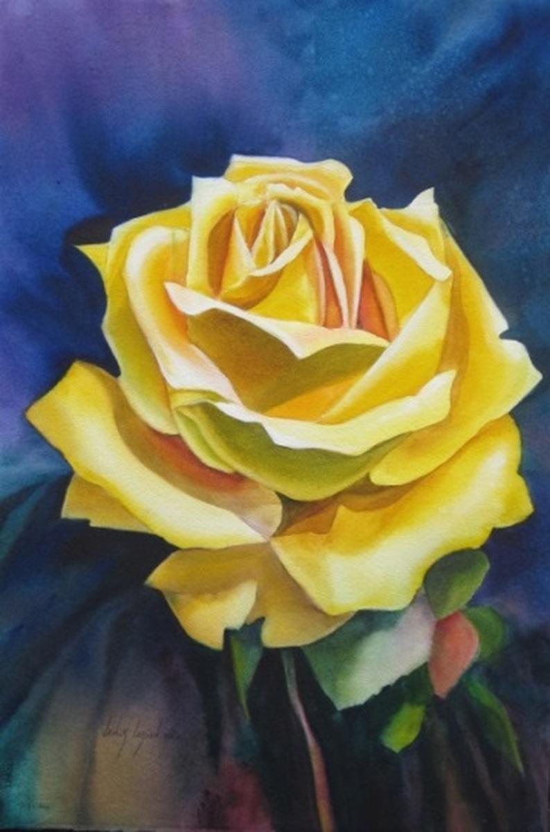YELLOW ROSE 2 (large view)