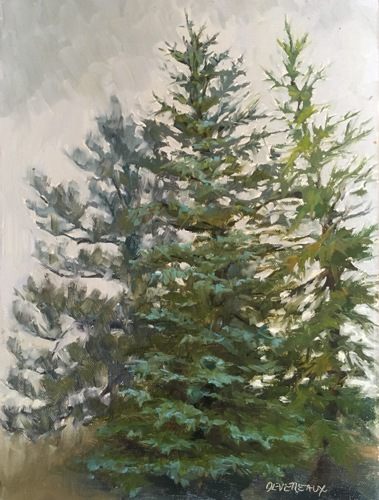 Spruce,Pine,Fir by Carol Williams Devereaux