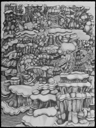 Landscape 9907