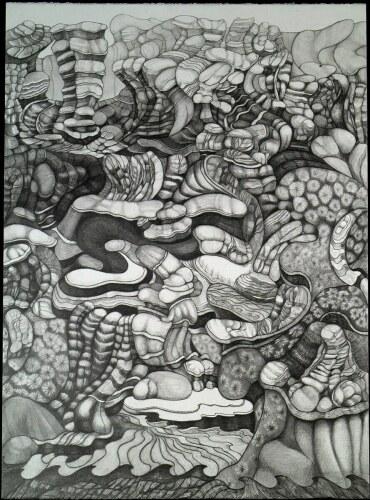 Landscape 20040_0761 Pencil Play by Carole  Richard  Kaufmann
