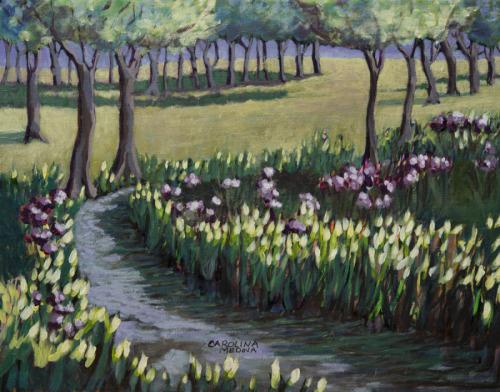 15 - Brook in a Field