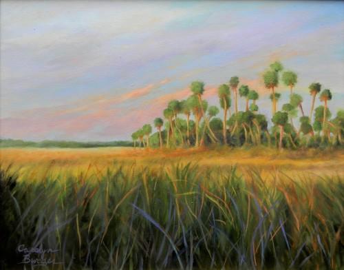 Everglades' Grass