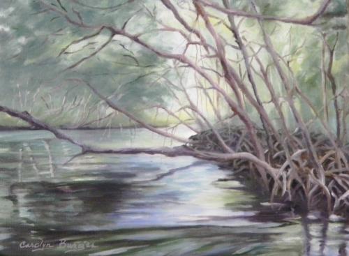 Mangrove Canopy