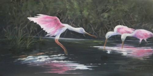 Spoonbills In The Mangroves
