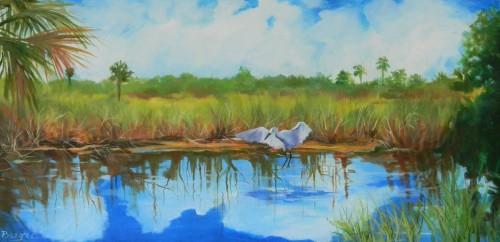 Everglades' Visitor