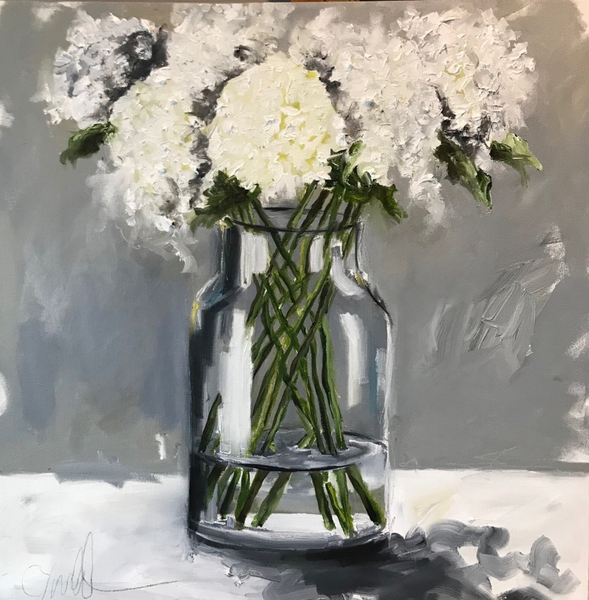 Study in White-Hydrangea (large view)