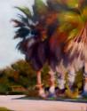 Palm Pink (thumbnail)