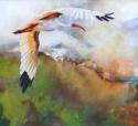 Early Bird (thumbnail)