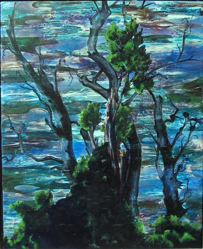 American River Trees