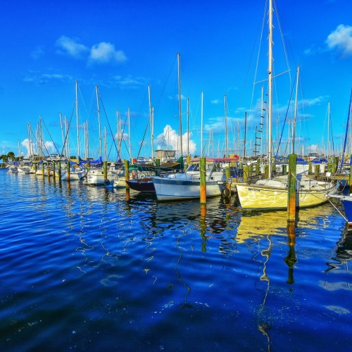 Titusville Municipal Marina by Chris Cadle Photography