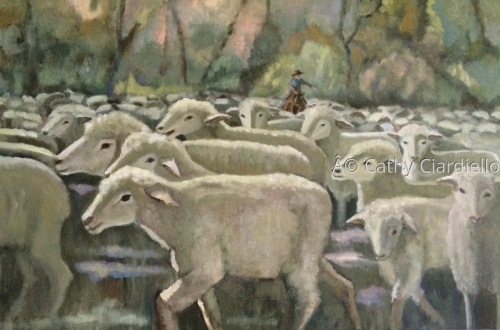 Shearing Time by Cathy Ciardiello Fine Art