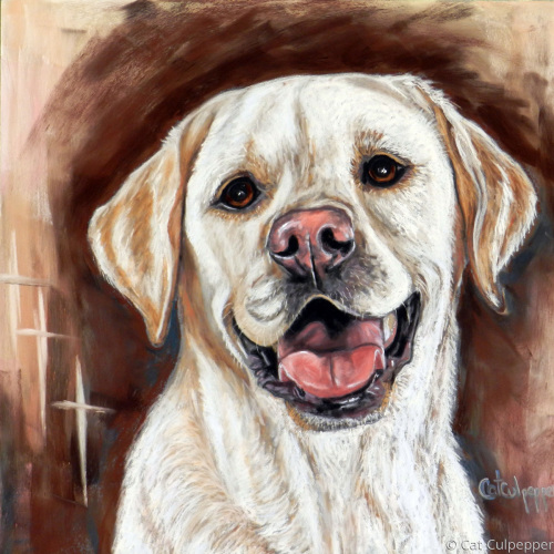 Yellow Lab by Commissioned Pet Portraits Artist Cat Culpepper