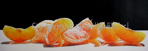 Orange Delight by  Cecile Baird