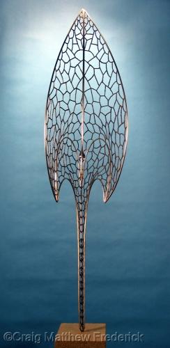Shield by Craig Matthew Frederick