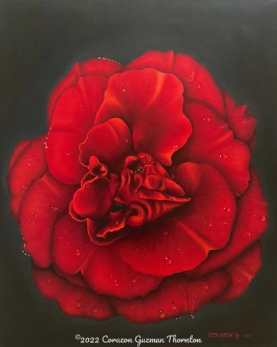 Red Rose No.1