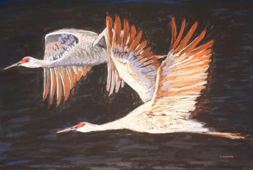 """""""SAND HILL CRANES ON THE WING"""""""