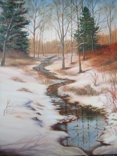Winter Stream - Portage Lakes, Ohio
