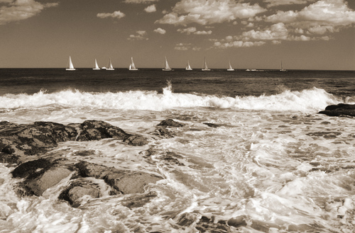 """Beavertail Boat Race"""